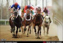 تصویر ترکمن ها عاشقان اسب و اسبداونی