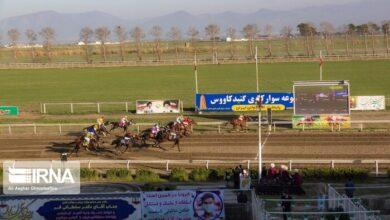 تصویر روز نخست هفته چهاردهم مسابقات اسبدوانی گنبد برگزار شد