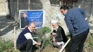 تصویر کاشت درخت قدردانی ( قدر آغاچ ) برای دکتر سارلی