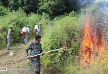 تصویر به یاد و خاطره تمامی سربازان گمنام حافظان منابع طبیعی کشورم