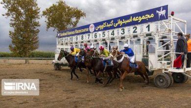 تصویر هفته نخست مسابقات اسبدوانی پاییزه گنبد یک روز زودتر آغاز میشود