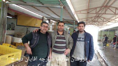 تصویر گزارشی از بازار ماهی فروشان گمیشان